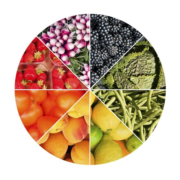 Fruits an vegetables circle collage isolated on white background