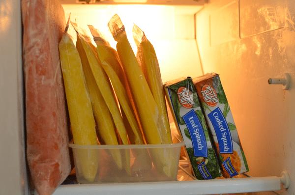 frozen-squash-in-freezer