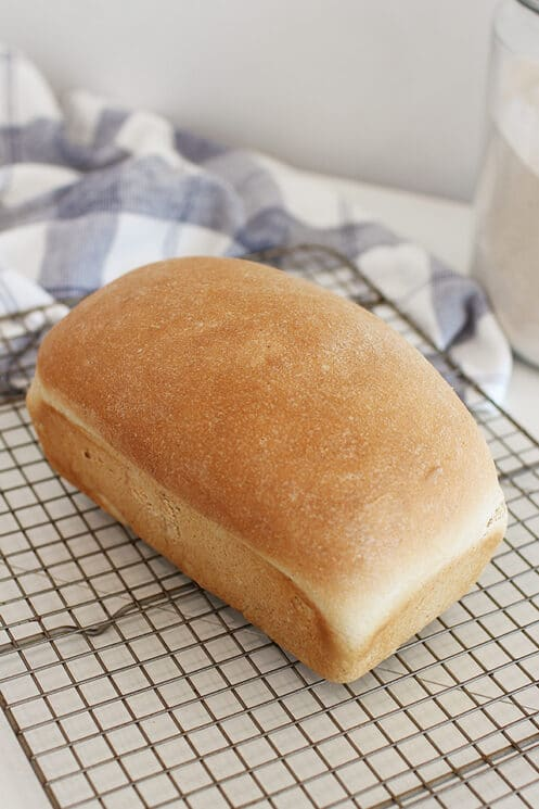 White whole wheat bread loaf