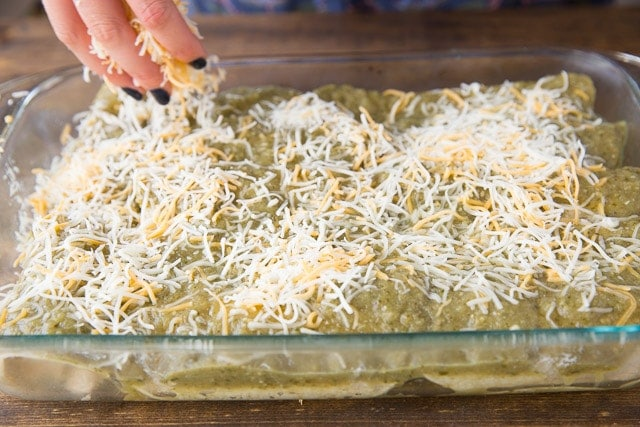Green Chili Chicken Enchiladas with Mexican cheese