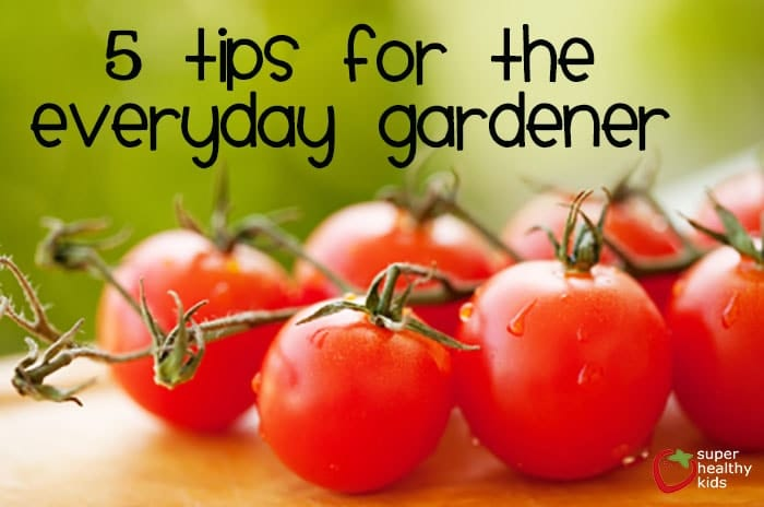 5 Tips for the Everyday Gardener