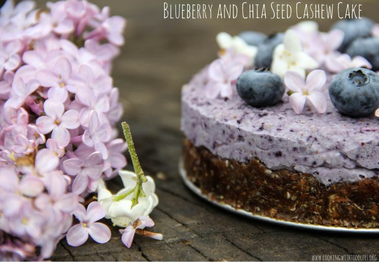 Blueberry Chia Seed Cashew Cake Recipe. A beautiful and delicious treat for any occasion.