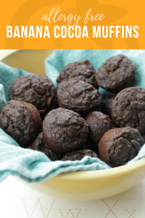 Allergy Free Banana Cocoa Muffins | Healthy Ideas & Recipes for Kids