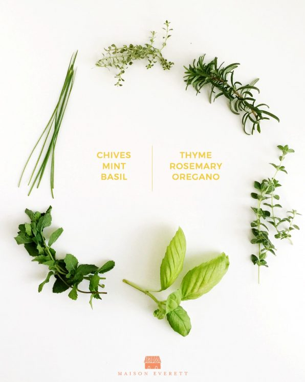 6 Beneficial Herbs to Grow Indoors this Fall. Have fresh herbs all Winter long! www.superhealthykids.com