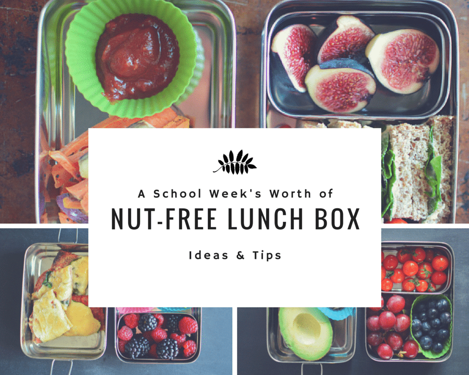 A Week's Worth of Nut-Free Lunch Box Ideas! www.superhealthykids.com