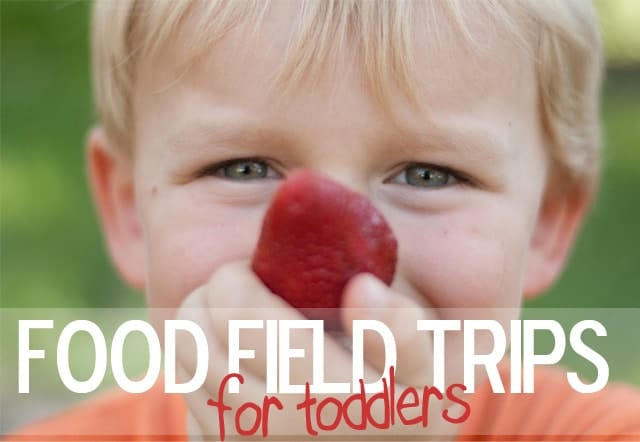 Fun Ideas for Food Field Trips for Toddlers & Preschoolers! www.superhealthykids.com