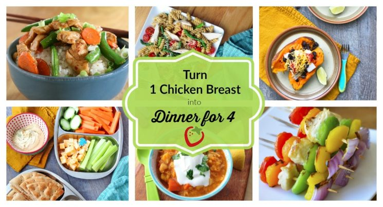 Chicken Breast Challenge: Ten Ways to Feed a Family with 1 Chicken Breast
