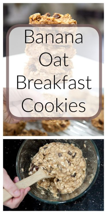 Banana Oat Breakfast Cookies