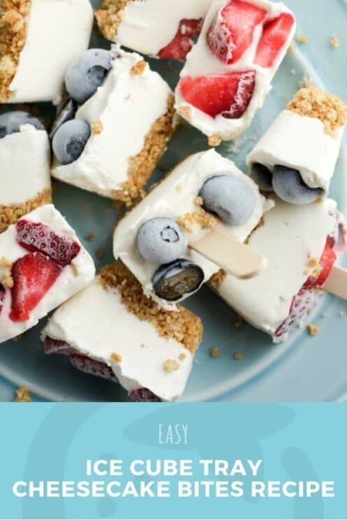 Ice Cube Tray Cheesecake Bites Recipe