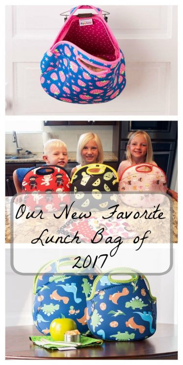 Our New Favorite Lunch Bag of 2017