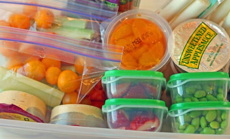Hummus, fruit cups, strawberries, edamame packed in containers to take to a theme park