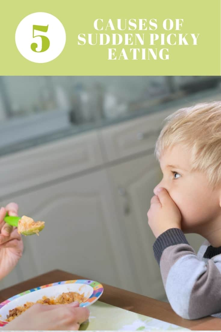 5 Causes of Sudden Picky Eating