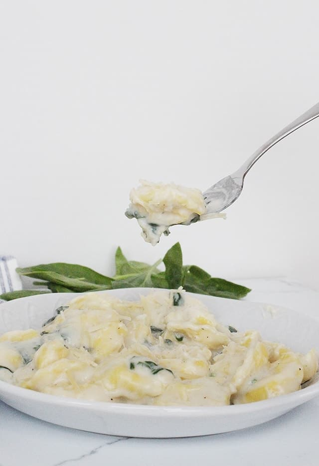 Tortellini with Spinach and Parmesan Cheese.