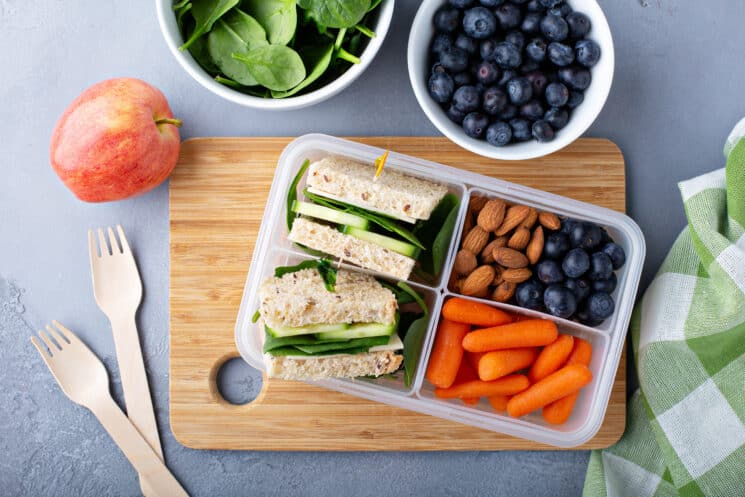 healthy balanced lunch for kids