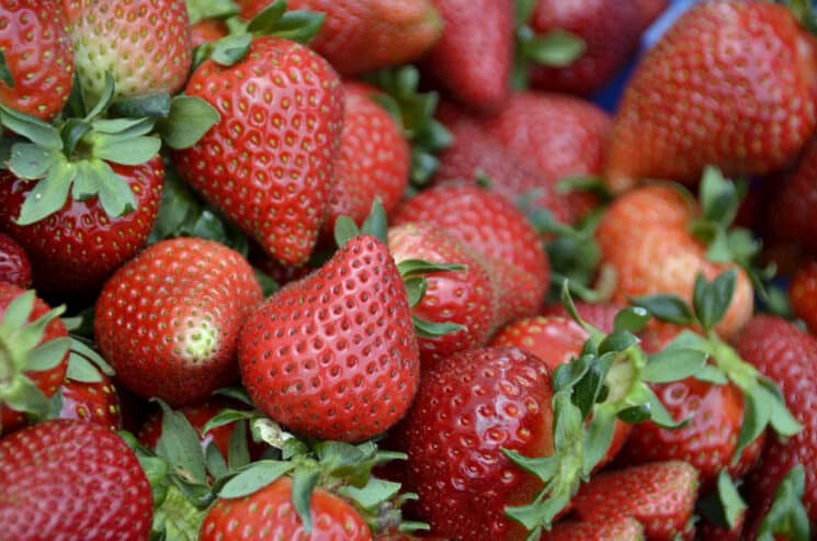 strawberries with stems on