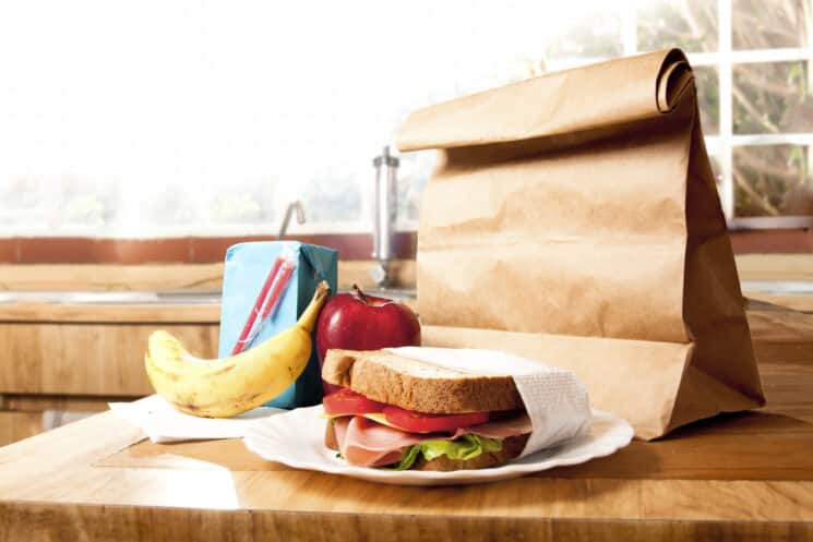 A ham sandwich on a plate in front of a brown lunch bag, apple and banana.