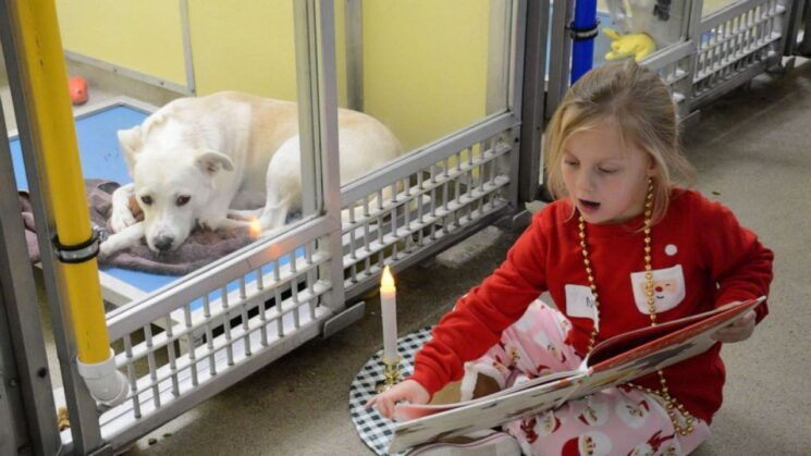 girl reading a book to a dog at an animal shelter