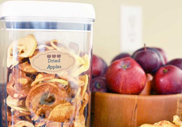 Cinnamon Sugar Dried apples in a air tight container with red apples in the background