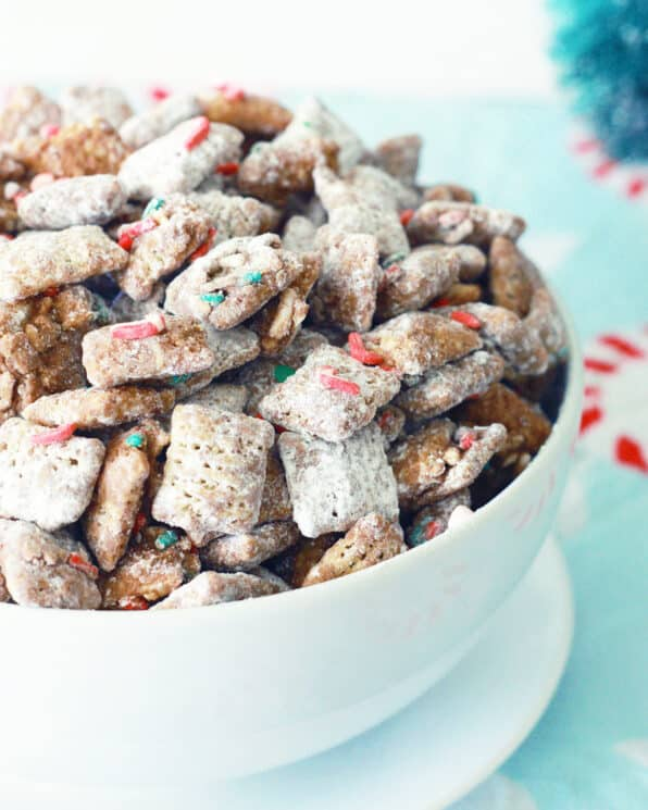 Christmas puppy food in a white bowl with Christmas sprinkles