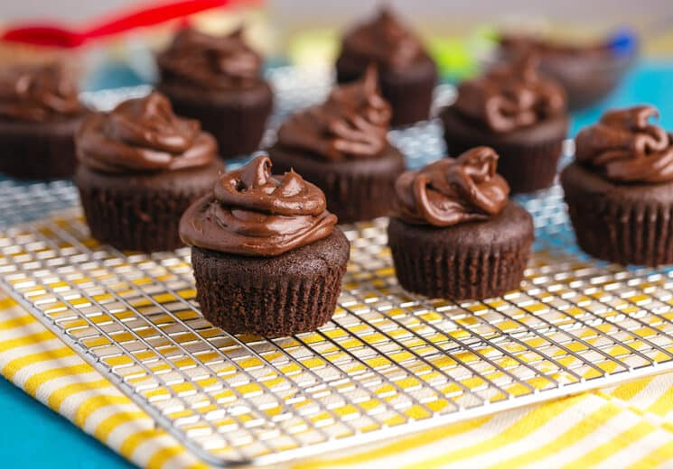 gluten-free mini chocolate cupcakes with chocolate icing on the cooling shelf