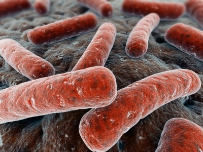 Will Probiotics Restore Good Bacteria for Kids? Who knew lacking bacteria could have such undesirable results?!