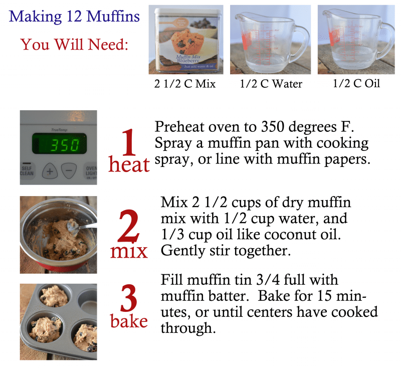 Homemade Mixes- Blueberry Muffins. Healthy fast food made easy!