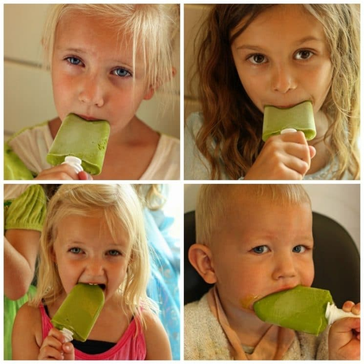 Green Frog Pops Recipe. We love hiding the vegetables in these yummy Green Frog Pops!