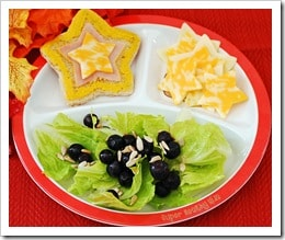 kidsplate with blueberry salad