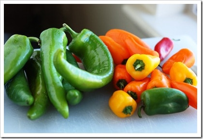 How to Freeze Peppers. Did you know you can freeze whole peppers and then use them later for stuffed peppers?